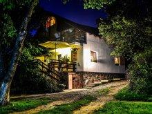 Accommodation Zabola (Zăbala), Hanna Guesthouse