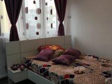 Accommodation Pleșcuța, Tamara Apartment