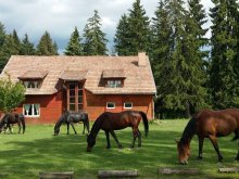 Accommodation Vârghiș, Sopárkút Pension