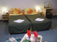Accommodation Dorna, Vila Casa Alesiv