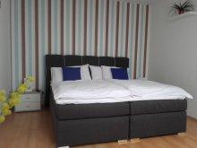 Accommodation Zirc, PE-KI Apartment