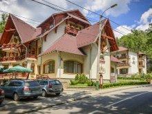 Hotel județul Mureş, Tichet de vacanță, Hotel Szeifert