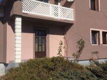 Accommodation Izvoru Mureșului, Becze Vanda Guesthouse