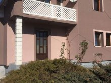 Accommodation Subcetate, Becze Vanda Guesthouse