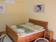 Accommodation Csanádalberti, Csilla Apartment