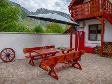 Guesthouse Rimetea, Four Season