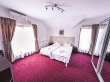 Accommodation Hălmăsău, Schwartz B&B