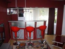 Accommodation Vama Buzăului, Gemenii Apartment