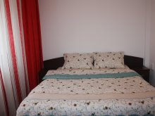 Accommodation Dragoslavele, Alexandru Apartment