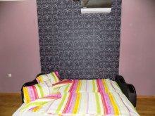 Accommodation Hajdú-Bihar county, Gabriel Apartment