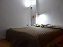 Accommodation Gura Siriului, Modern Apartment