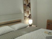 Accommodation Sânzieni, Lidia Studio Apartment