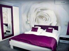Accommodation Star Wine Festival Eger, Kék Laguna Apartments