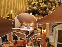 Cazare Monok, Alfa Hotel & Wellness Centrum Superior