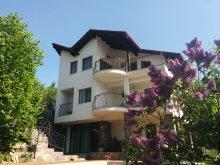 Villa Desághátja (Desag), Calea Poienii Villa