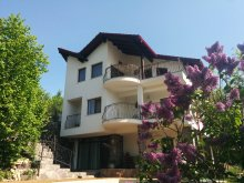 Villa Felsőszombatfalva (Sâmbăta de Sus), Calea Poienii Villa