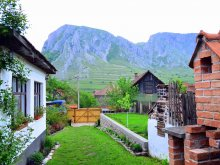 Szállás Valea Cocești, Nosztalgia Vendégház