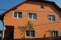 Accommodation Bisericani, Júlia Guesthouse