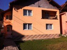 Apartament Bistrița Bârgăului Fabrici, Vila Livia