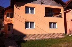 Guesthouse Șesuri, Livia Villa