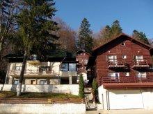 Cazare Valea Largă-Sărulești, Vila Darius 1
