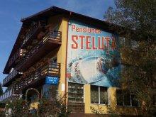 Panzió Fenyőfalva (Bradu), Steluța Panzió