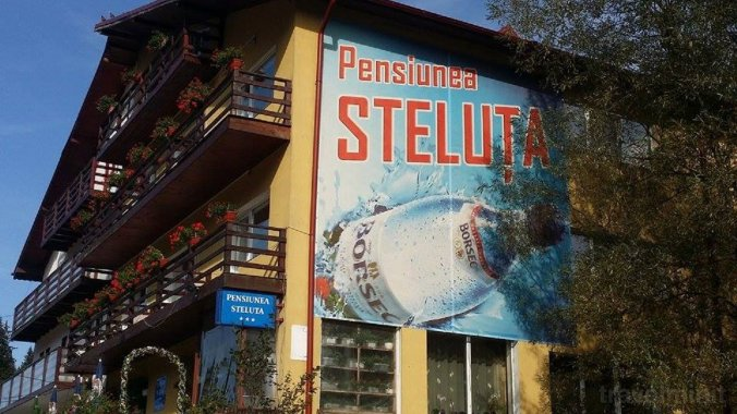 Steluța Guesthouse Predeal