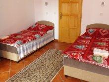 Accommodation Hungary, Brigitta Deluxe Apartment