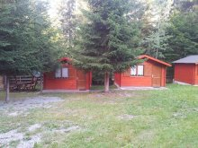 Accommodation Izvoare, Libáni Vacation Home