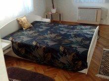 Accommodation Misefa, Boglár Chalet