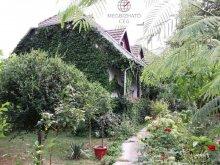 Szállás Nagydobos, Erdőszéli Vendégház