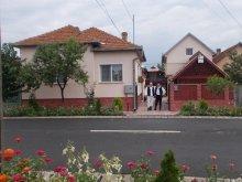 Szállás Mărgineni, Szatmári Ottó Vendégház