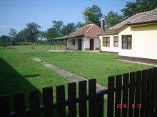 Accommodation Heves county, Sarudi Apartment