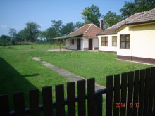 Guesthouse Heves county, Sarudi Apartment