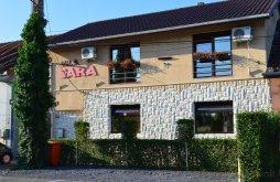 Villa Kisjecsa (Iecea Mică), Sara Villa