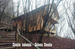 Accommodation Braniștea, Csonka Chalet