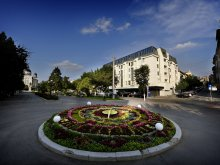 Cazare Bălăușeri, Hotel Plaza V