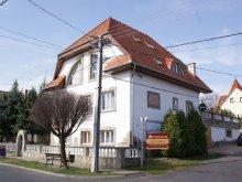 Accommodation Szentkozmadombja, Amadeus Villa