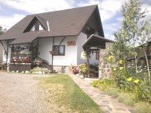Accommodation Sovata, Tichet de vacanță, Amalia B&B