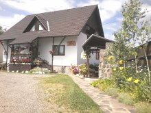 Bed & breakfast Praid, Amalia B&B