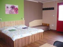 Accommodation Berkenye, Málnás Apartment 1