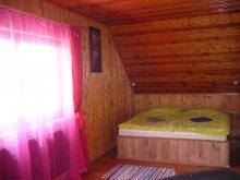 Accommodation Szigetbecse, Málnás Apartment 2