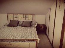 Accommodation Lunca (Vârfu Câmpului), Vintage Apartment