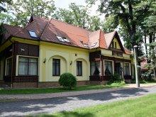 Hotel Tiszarád, Hotel Villa
