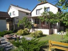 Accommodation Cserkeszőlő, Csila Vacation home