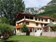 "Bed & breakfast Caraș-Severin county, Tichet de vacanță, Cuibul Viselor ""La Johnny"" Guesthouse"