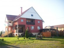 Accommodation Băile Homorod Ski Slope, Alexandra Guesthouse