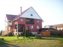 Accommodation Capalnita (Căpâlnița), Alexandra Guesthouse