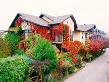 Accommodation Vița, Milexim Guesthouse