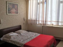 Accommodation Mărunțișu, Taco Hotel